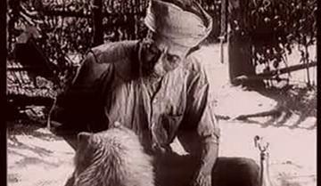 Phân tích tác phẩm Lão Hạc của Nam Cao