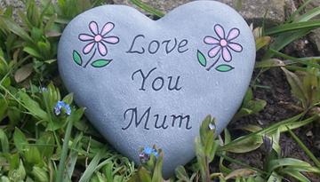Phân tích lòng yêu thương mẹ của cậu bé Hồng trong đoạn trích Trong lòng mẹ của tập hồi kí Những ngày thơ ấu của nhà văn  Nguyên Hồng