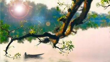 Hãy phân tích bài thơ Quê hương để thấy được tình cảm của Tế Hanh dành cho quê hương đất nước