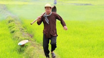 Phân tích truyện ngắn Lão Hạc để làm nổi bật cái nhìn người nông dân của Nam Cao